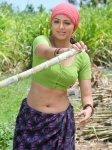 Bhoomika-Hot-Bhramaram Movie(1)